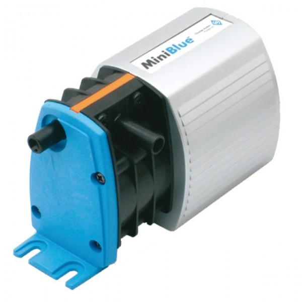Blue Diamond Mini Pumps
